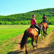 Girls riding horses - Stock Photo
