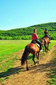 Girls riding horses — Stock Photo