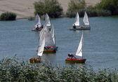 Sailing regatta 2 — Stock Photo