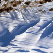 Striped snow 2 — Stock Photo