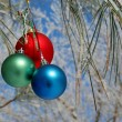 Three colour balls on a pines branch - Stok fotoğraf