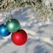 Three colour balls on a pines branch - Foto Stock