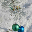 Two colour balls on a snow-covered tree — Stock Photo