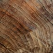 Stock Photo: Dark brown face of wood