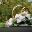 Stock Photo: Golden wedding rings 2