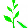 Drawing plant and pen — Stock Photo