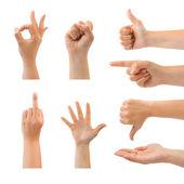 Uppsättning av gestikulerande händer — Stockfoto