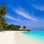 Tropical beach — Stock Photo #1182388