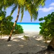 Pathway to tropical beach - Stock Photo
