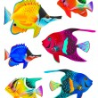 Set of toy fishes — Stock Photo