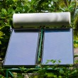 Solar panel and trees — Stock Photo