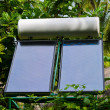 Solar panel and trees - Stock Photo