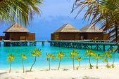 Tropik bir adada su bungalov — Stok fotoğraf