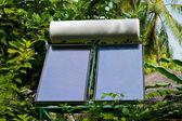 Solar panel and trees — Stock Photo