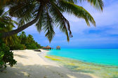 Water bungalows on beach of tropical isl — Stock Photo