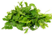 Bunch of a parsley — Stock Photo