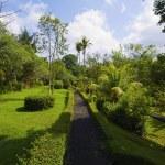Taman Ayun Temple park lane — Stock Photo #1173506