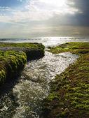 Shiny stream — Stock Photo