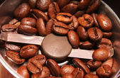 Coffee beans in a coffee grinder — Stock Photo