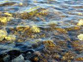 Stones under water — Stock Photo