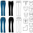 Royalty-Free Stock Vector Image: Jeans