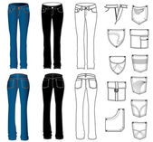 Jeans — Stock Vector