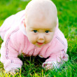 Royalty-Free Stock Photo: Baby creeping on grass