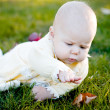 Pretty baby girl and leaf — Stock Photo #1219859