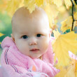Royalty-Free Stock Photo: Autumn baby