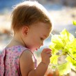 Child touching green leaves — Stock Photo #1222867