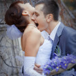 Stock Photo: Wedding passion