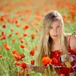 Girl in poppy field — Stock Photo #1245728