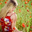 Girl in poppy field — Stock Photo