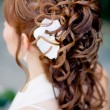 Royalty-Free Stock Photo: Bridal hairstyle