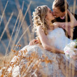 Kissing wedding couple — Stock Photo
