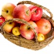 Apples in basket — Stock Photo #1249095
