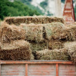 Hay in lorry - Stock Photo