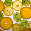 Citrus kaleidoscope — Stock Photo