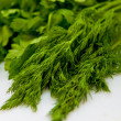 Dill and parsley — 图库照片