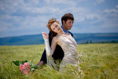 Wedding couple in eared field — Stock Photo