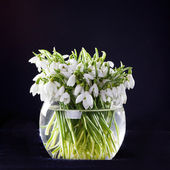 Snowdrops in vase — Stock Photo