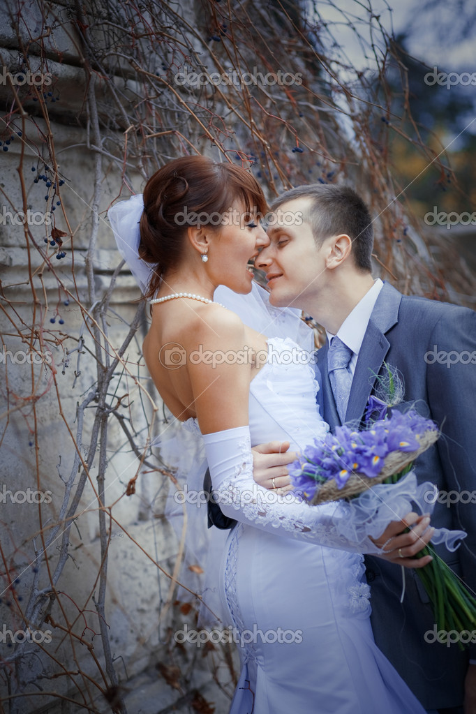 Bride kissing groom in their wedding day outdoors — Stock Photo #1242870
