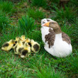 Goslings on grass — Stock Photo #1183616