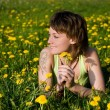 Stock Photo: Dandelions glade