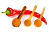 Red hot chili — Stock Photo