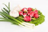 Spring onions, garlic, lettuce and radis — Stock Photo