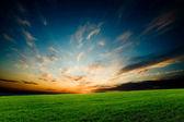 Bright glowing sunset — Stock Photo