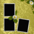 Green abstract background with frames — Stock Photo