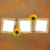Autumn background with frames and flower — Stock Photo