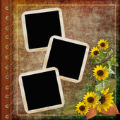 Album cover with frame and flowers — Stock Photo